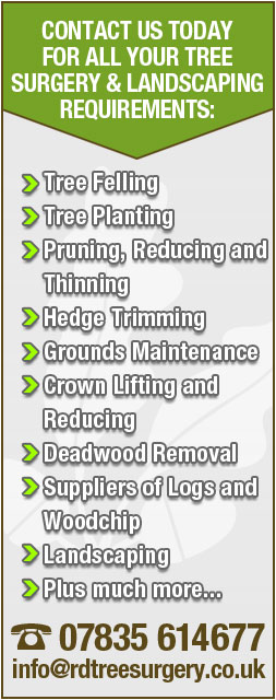 Contact R.D. Tree Surgery for all your Landscaping Requirements